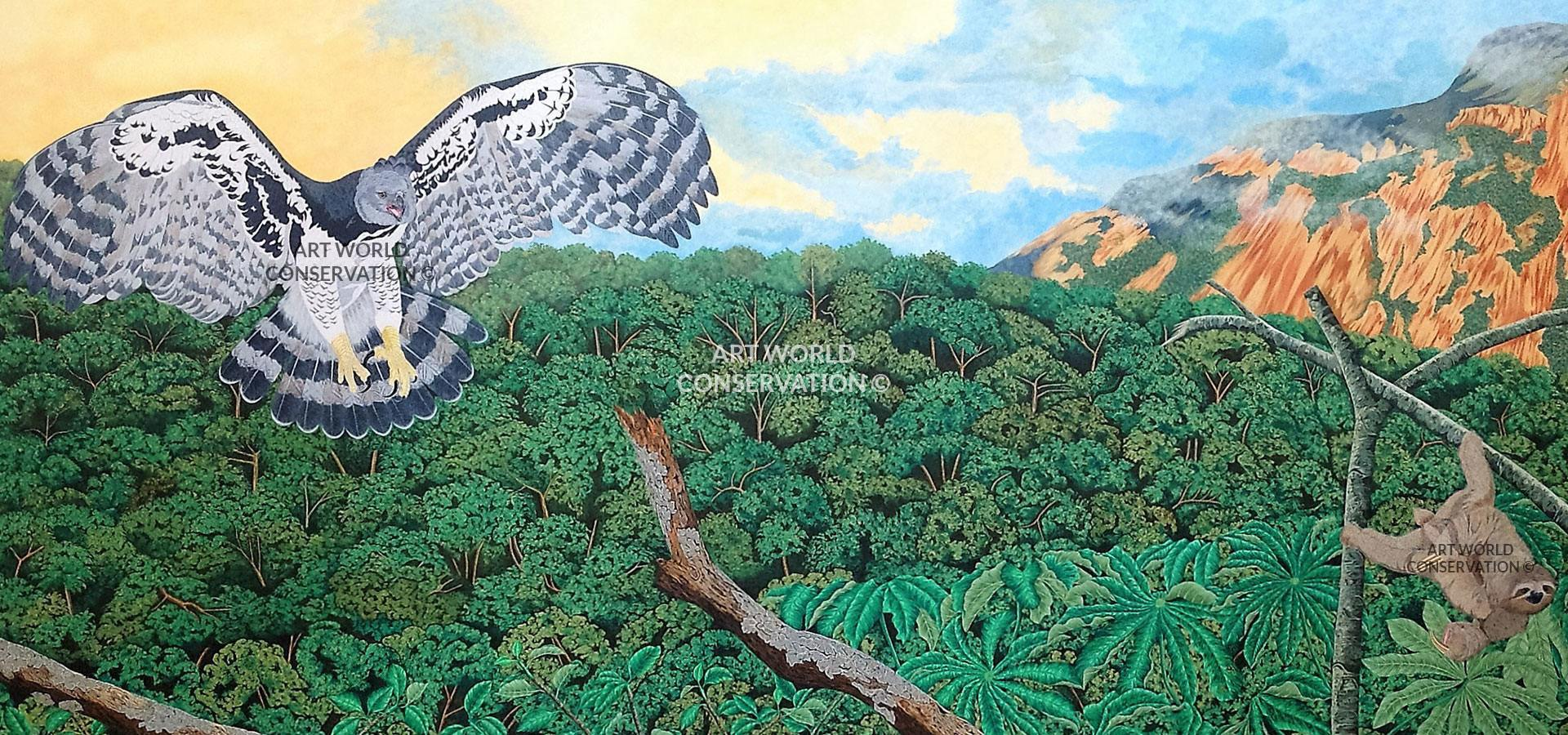 Harpy Eagle Wildlife Art