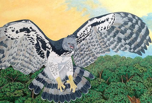 Harpy Eagle & Sloth painting