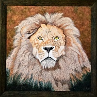 Exclusive print of Katanga Lion on canvas 87cm x 87 cm.jpg