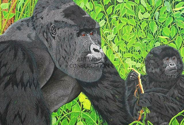 Gorillas In the Virungas painting